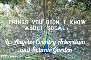 Read more about the article Things you didn't know about SoCal: Los Angeles Country Arboretum and Botanic Garden