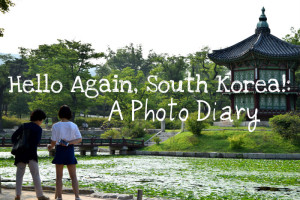 Hello Again, South Korea!: A Photo Diary