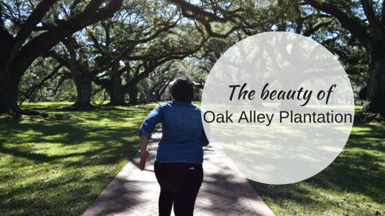 The Beauty of Oak Alley Plantation