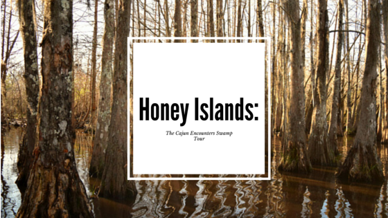 Honey Islands: The Cajun Encounters Swamp Tour