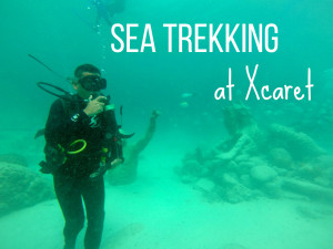Sea Trekking at Xcaret